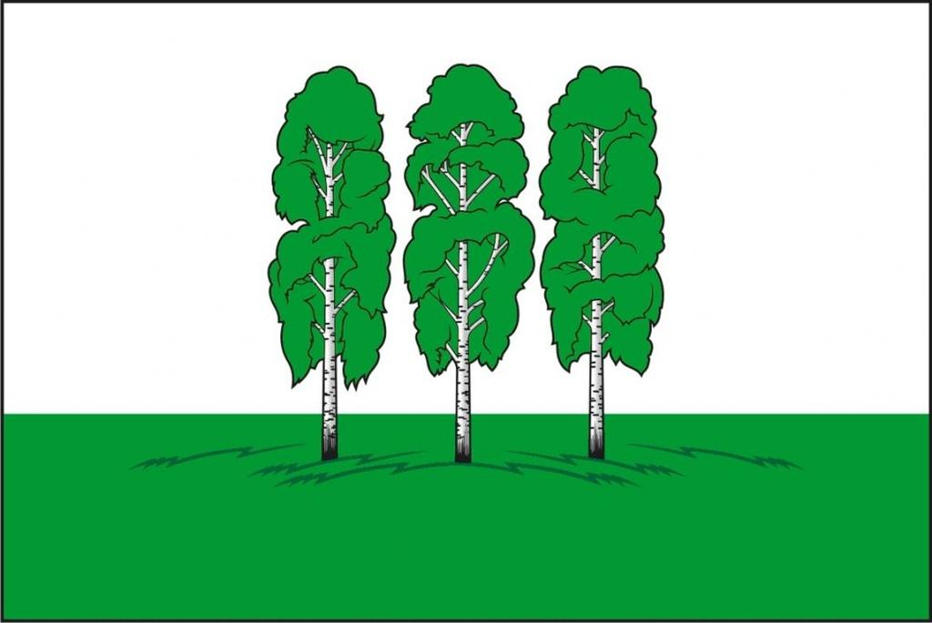 flag (Medium).jpg